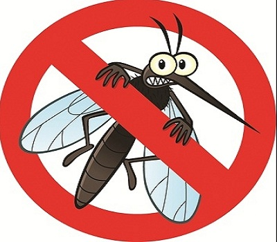 Mosquito menace likely to be back