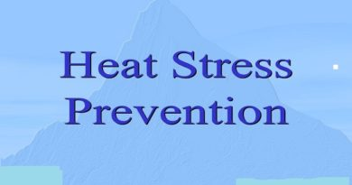 *90% of the cases reported are due to overexposure to heat and prevention is key, says IMA*