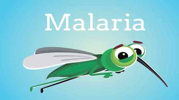 About 90% of the estimated malaria cases in the Southeast region are from India