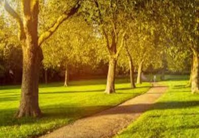 Green spaces good for mental health and well-being