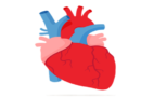 Ways to control cholesterol deposit in the heart